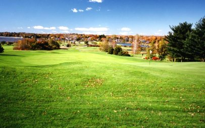Country Club of Fairfield - Before tree removal, hodge-podge of trees obstructing views.