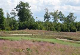 This view from the forward tee gives a hint at just how small the green is - scary and exciting at the same time!