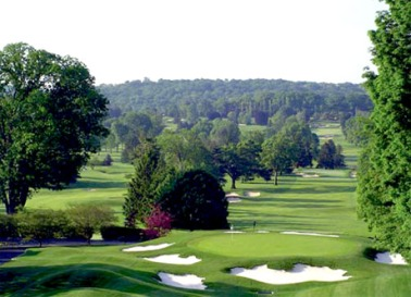Whitemarsh Valley #9