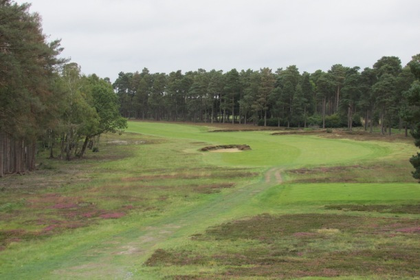 Harry Colt's Swinley Forest
