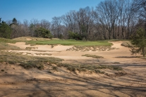 #3 - Fescue is used to add an artistic touch (photo by Scott Vincent)