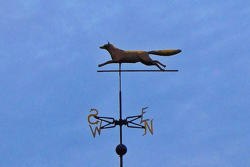 Myopia-Weathervane-JC.jpg
