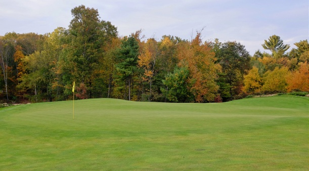 BostonGolfClub17-Green.jpg