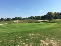 meadowbrook11-greenright