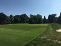meadowbrook2-greenfront